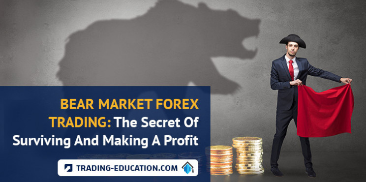 Bear Market Forex Trading: The Secret Of Surviving And Making A Profit