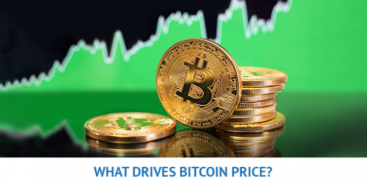What Will Drive the Bitcoin Price In 2021?