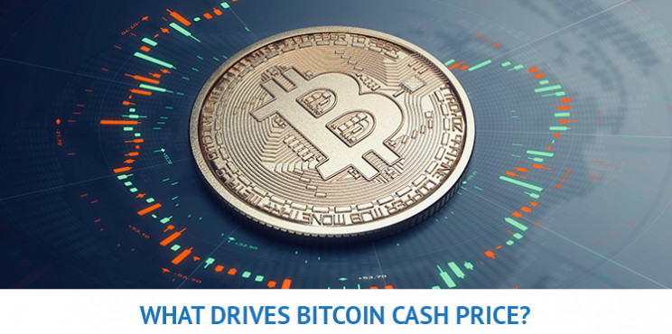 What Will Drive The Bitcoin Cash Price In 2021?