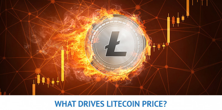 What Will Drive Litecoin Price in 2021?
