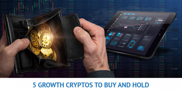 $2000 to Invest? 5 Growth Cryptos to Buy and Hold in 2021