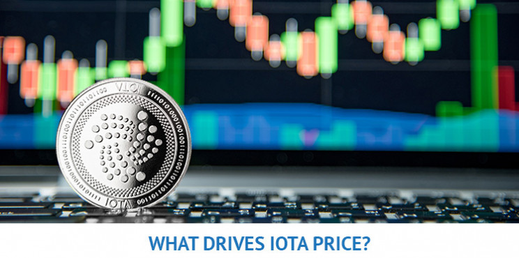What Will Drive The IOTA Price In 2021?