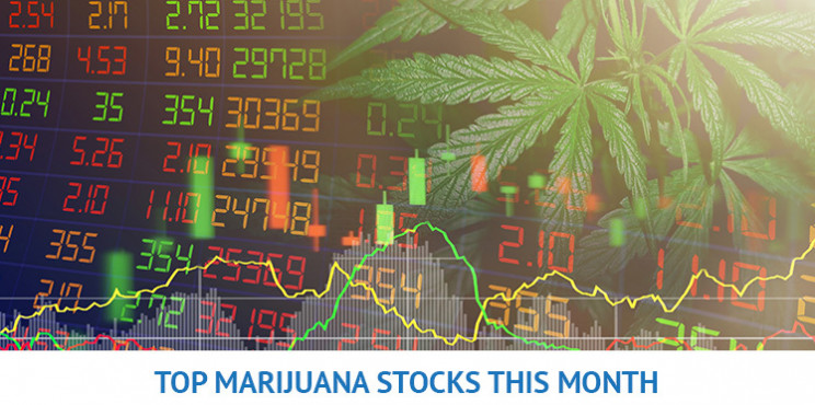 Top Marijuana Stocks for April 2021