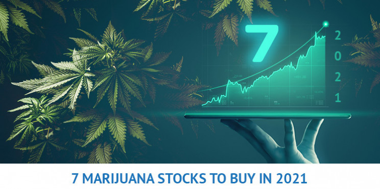 7 Marijuana Stocks to Buy That Could Appreciate In 2021