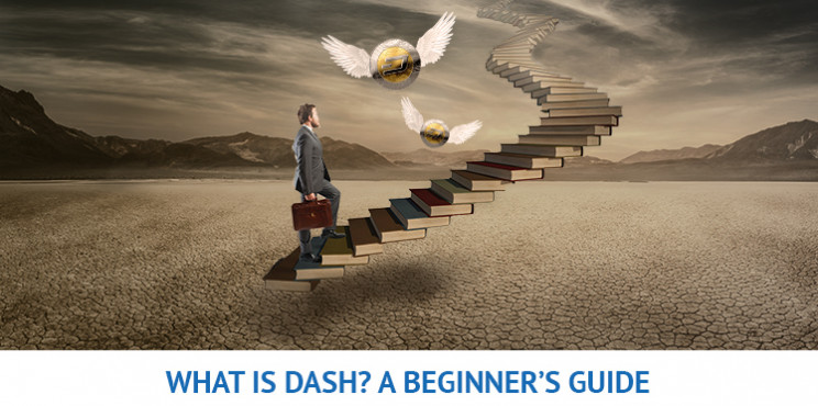 What Is Dash? A Beginner's Guide To Dash and Tips Before Investing In It