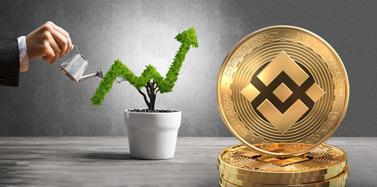 How to Invest in Binance Coin 2021