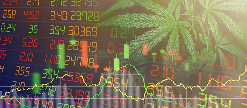 Best Marijuana Penny Stocks Right Now