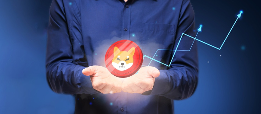 15 Reasons Why You Should Invest in Shiba Inu Today