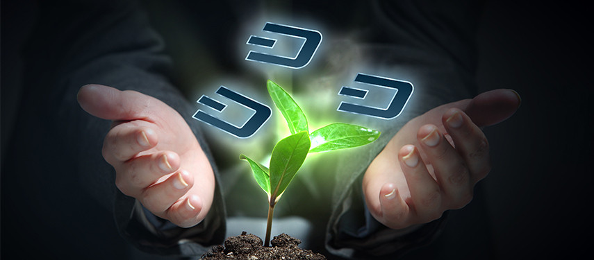 Is Dash A Good Investment And Should I Invest In DASH?