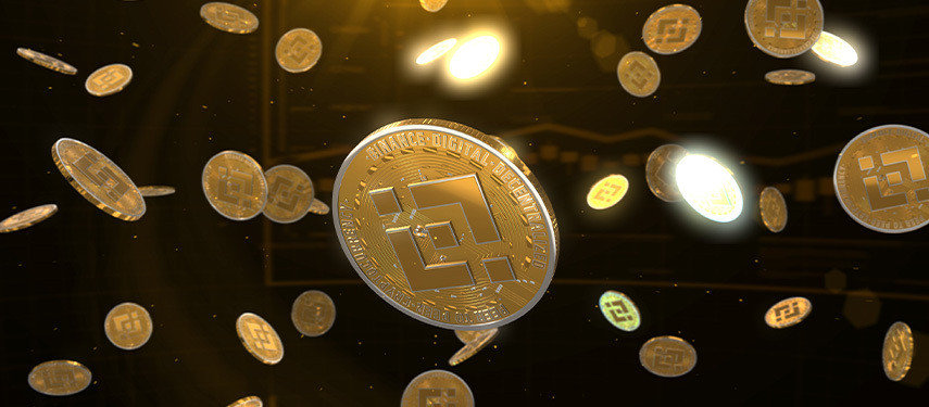 What Are Binance Coins?