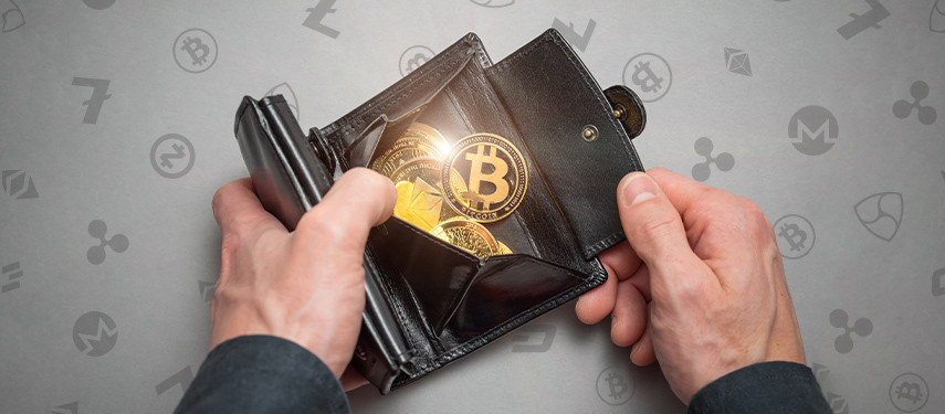 How to Choose a Cryptocurrency Wallet