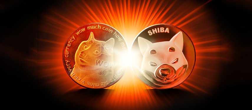 Dogecoin vs Shiba: Which Crypto Should You Buy in 2021