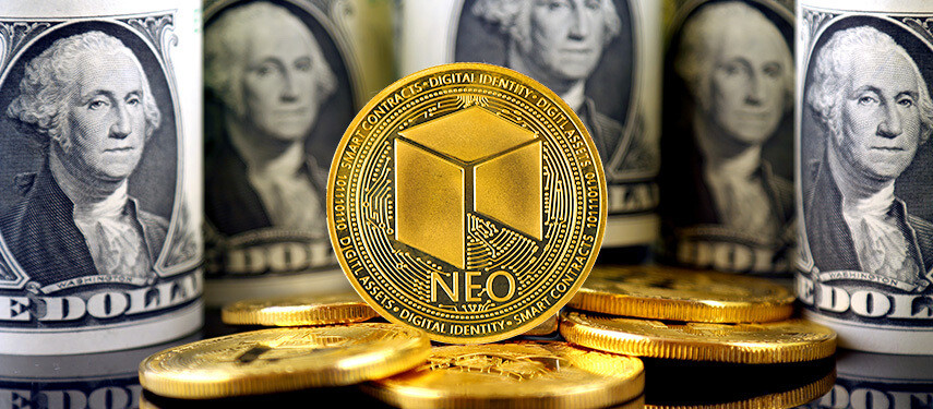 Will NEO Make Me Rich in 10 Years?