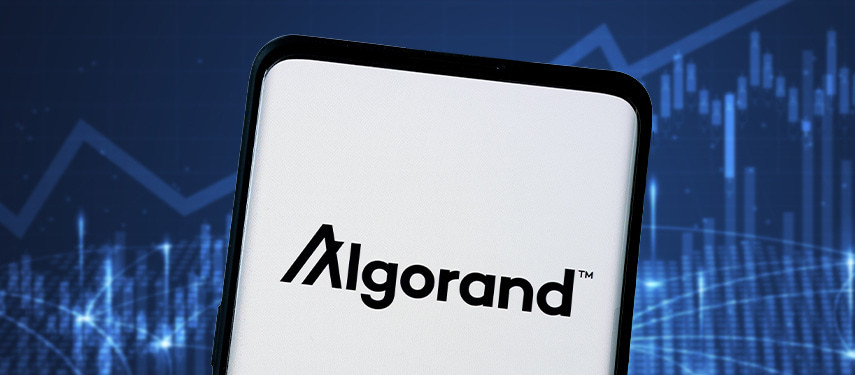 Is Algorand A Good Investment and Should I Invest in ALGO?