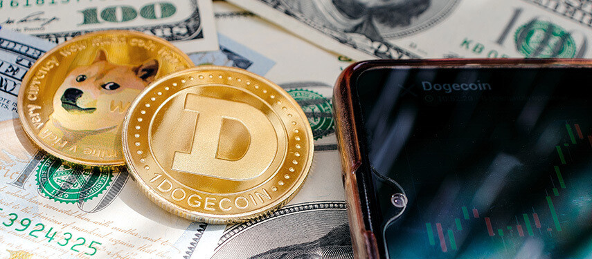 Should You Buy Dogecoin? Buying Dogecoin After It Hit Its Lowest