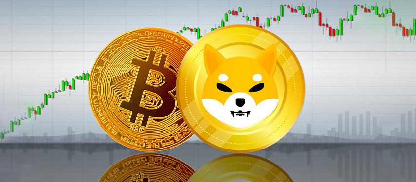 Bitcoin vs Shiba: Which Crypto Should You Buy?