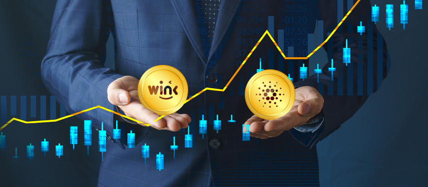 Can Cardano Hit $1000? Is It A Good Idea To Buy Cardano Instead Of Wink?