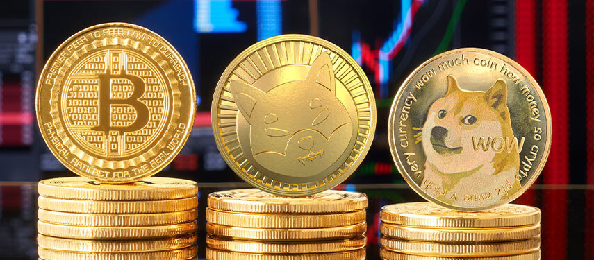 Bitcoin vs. Dogecoin vs. Shiba Inu: Which Cryptocurrency Is A Buy?
