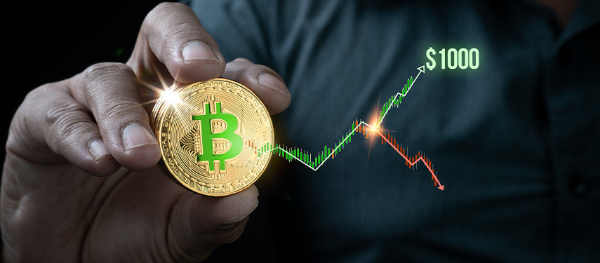 Will Bitcoin Cash Reach $1,000 in 2021?