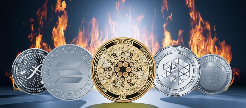 Got $3000? 5 Explosive Cryptocurrencies To Buy Now