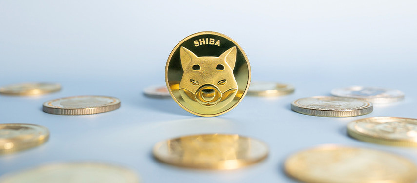 The 5 Best Ways to Buy Shiba Inu Coin (SHIB) in 2021