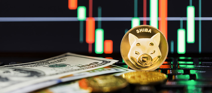 Why Do Shiba Inu Coins Have Value?