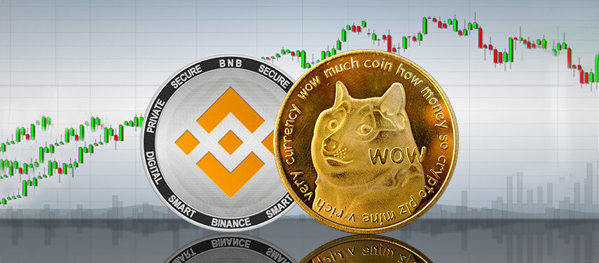Binance Coin vs Dogecoin: Which Crypto Should You Buy