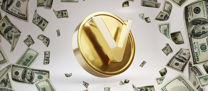 Will VeChain (VET) Make Me Rich?