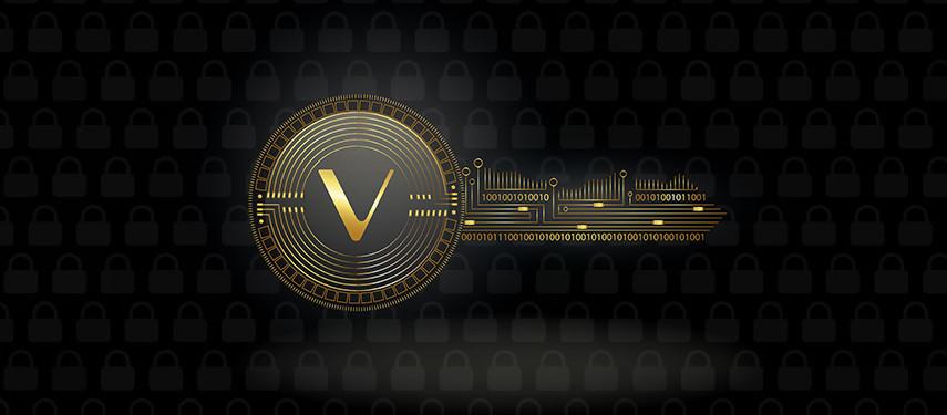 Is Vechain (VET) Safe?