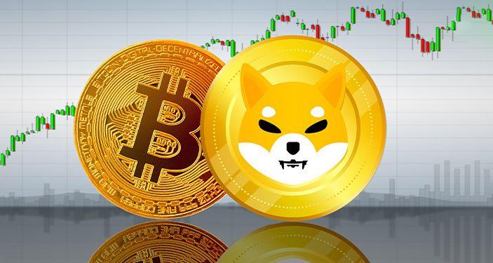 Bitcoin vs Shiba Inu