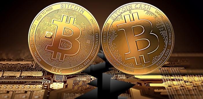 investește în bitcoin sau bitcoin cash