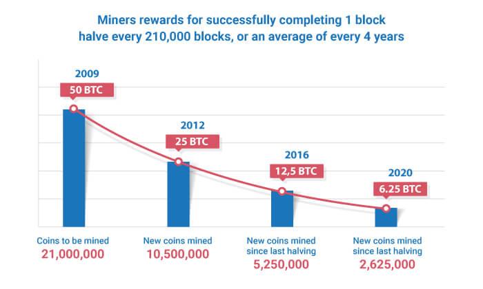 Miner Rewards