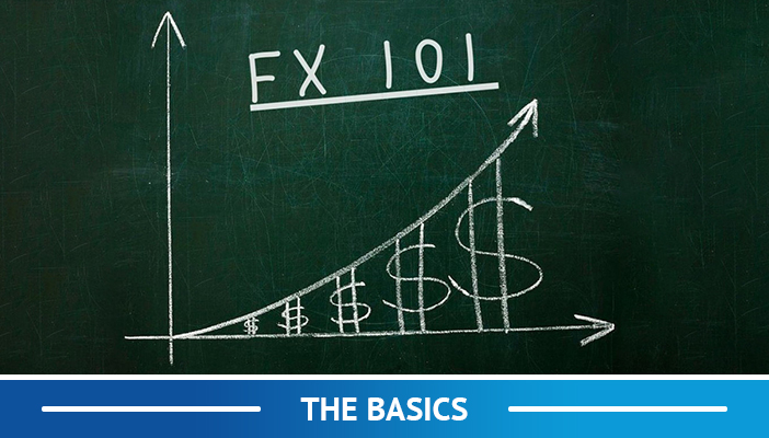 learn the forex basics