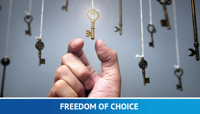 freedom of choice, full time forex trader