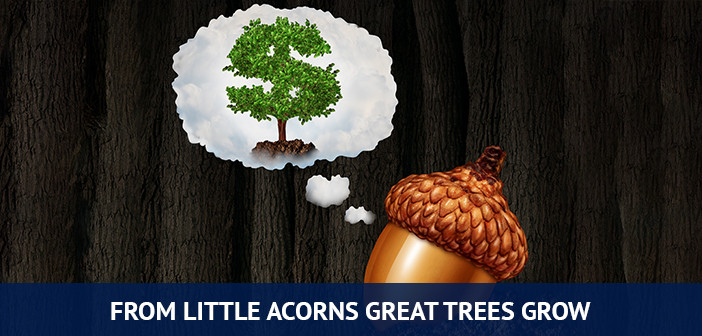 from a little acorns great trees grow, value investing