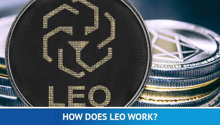 how does leo work