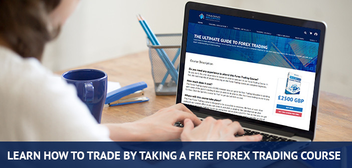 learn to trade with our forex trading course