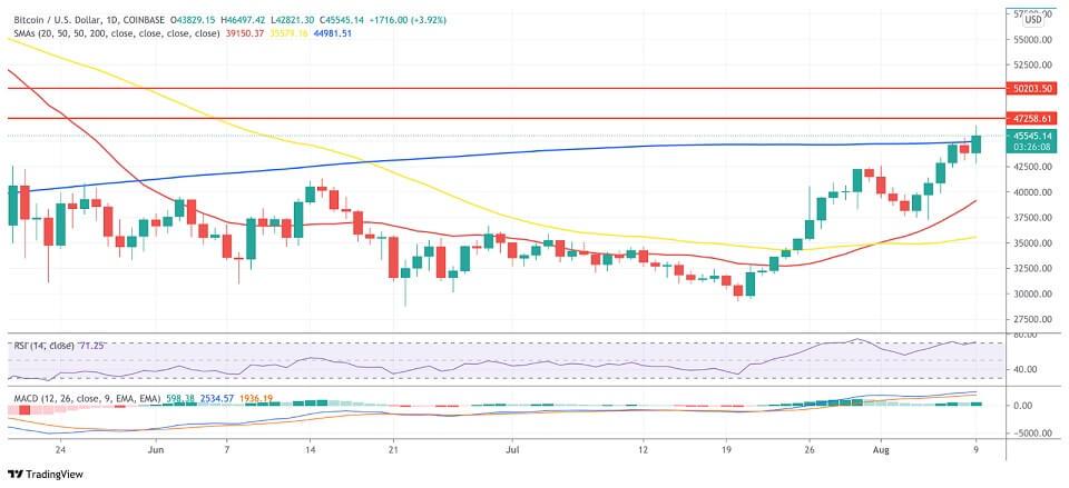 BTC/USD daily chart 081021
