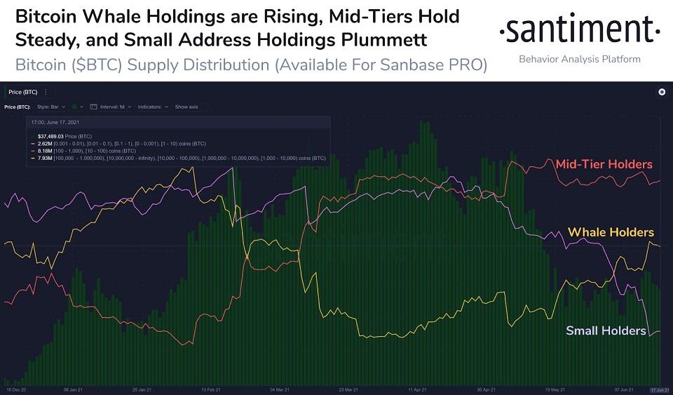 BTC/USD santiment chart 062121