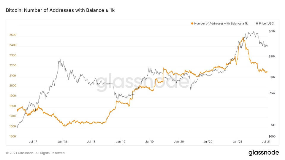 BTC/USD glassnode chart 2 071421