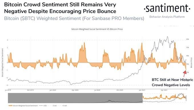 BTC/USD santiment chart 063021