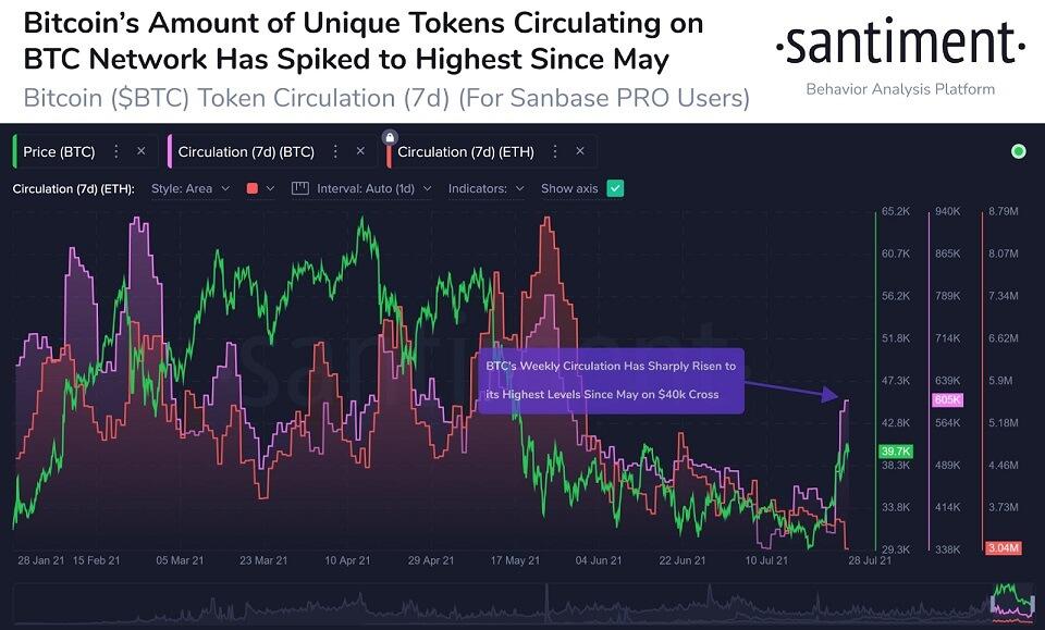 BTC/USD santiment chart 2 073021