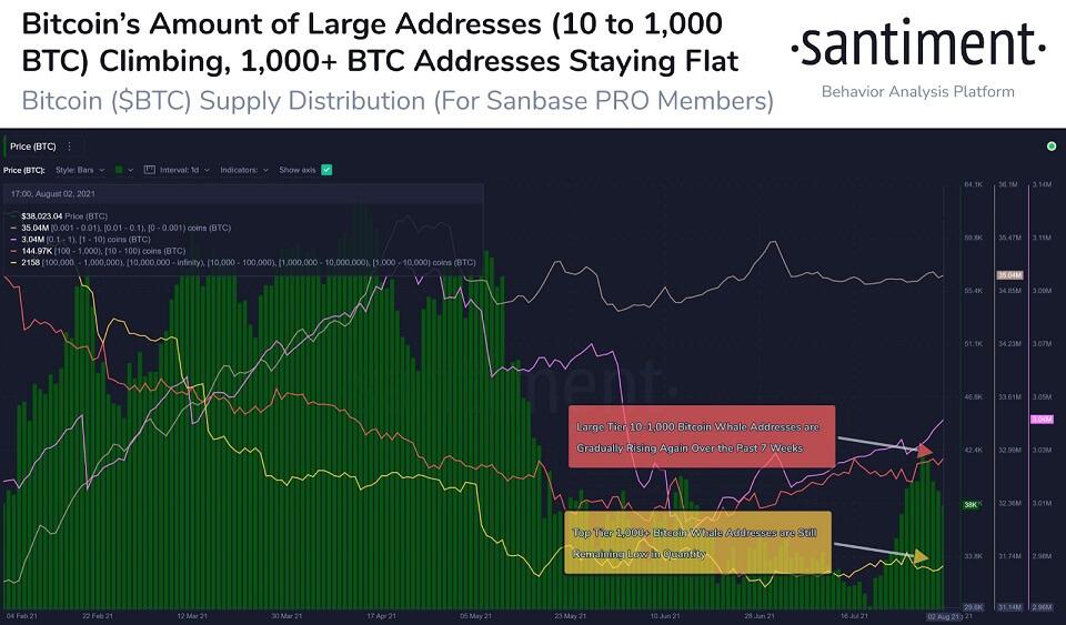BTC/USD santiment chart 080421