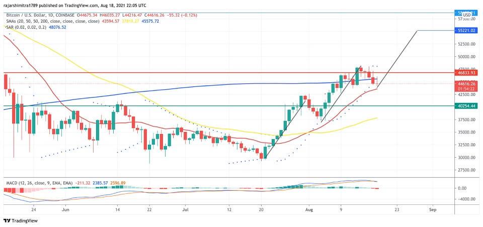 BTC/USD daily chart 081921