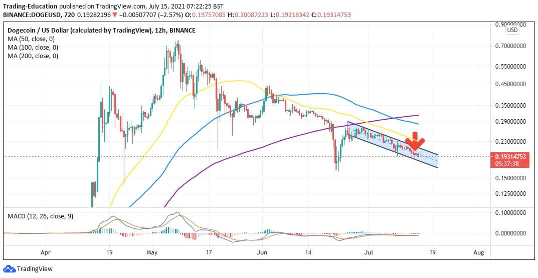 DOGE/USD four hour chart