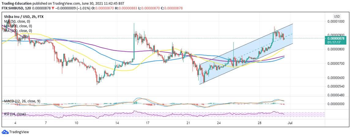 SHIB/USD 12-hour chart 063021