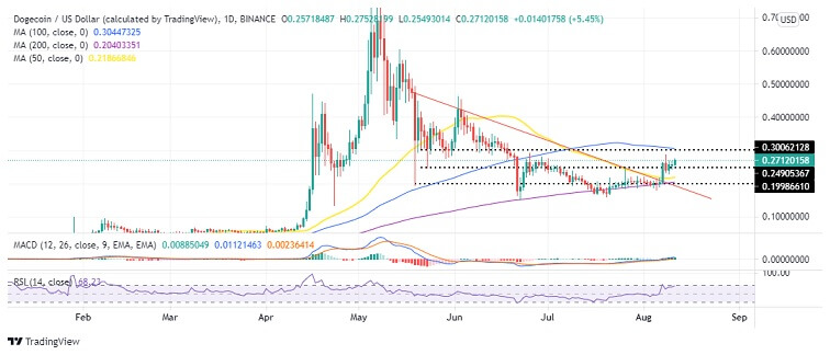 DOGE/USD Daily Chart 081121