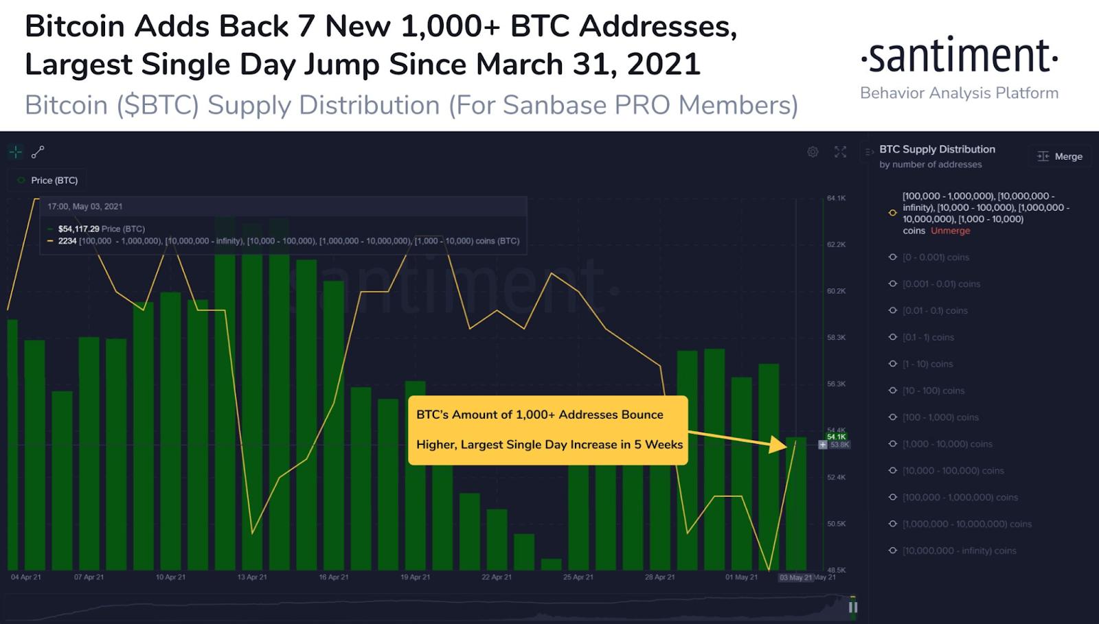 BTC Santiment Chart