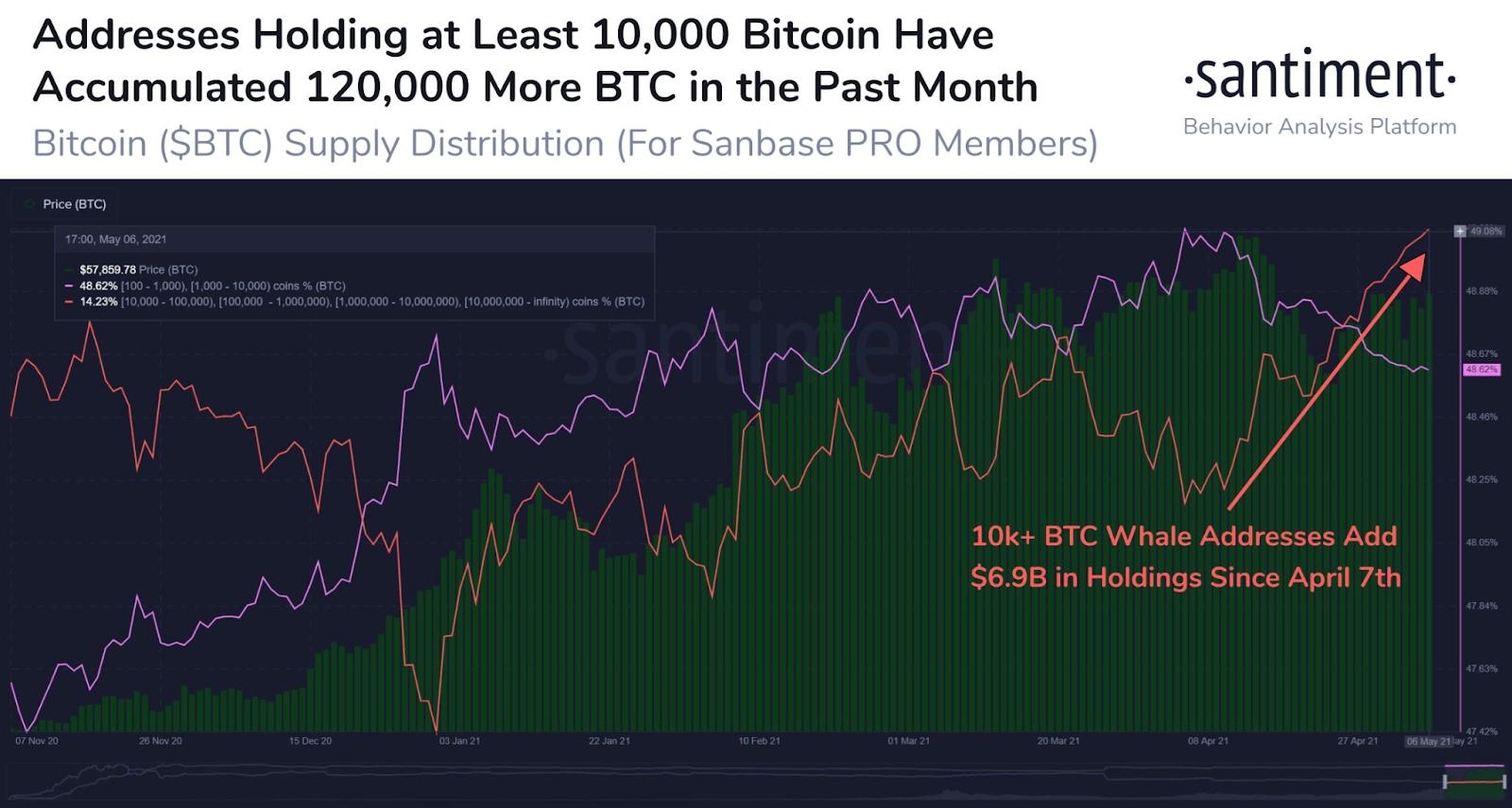 Santiment Chart - Addresses Holding > 10,000 Bitcoin