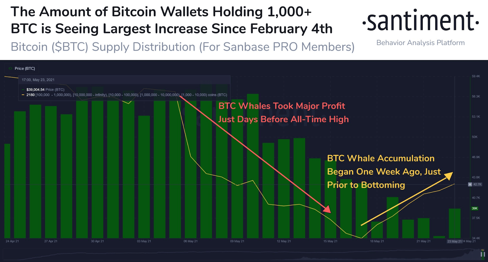 BTC Wallets Holding 1,000+ BTC